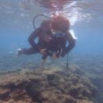 沖縄ダイビング☆ 9/4 FUNビーチダイビング  なすび