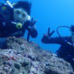 沖縄ダイビング☆9/16 珊瑚礁体験ダイビング 10:30~ しおん