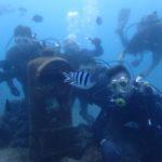 沖縄ダイビング☆9/16 珊瑚礁体験ダイビング 15:00~ とも・なすび・しおん。ローラ