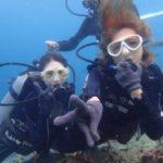 沖縄ダイビング☆9/11 極上2DIVE 体験ダイビング 13:00~ なすび・やす