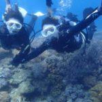 沖縄ダイビング☆9/4 珊瑚礁体験ダイビング 13:00~ なすび・やす