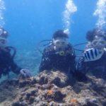 沖縄ダイビング☆9/2 青の洞窟体験ダイビング 8:00~ しおん・ローラ