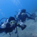 沖縄ダイビング☆ 9/30 珊瑚礁体験ダイビング 10:30~ なすび・しおん・ローラ