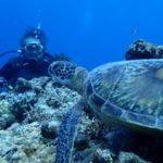 沖縄ダイビング☆9/29 FUNボートダイビング なすび