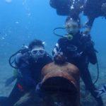 沖縄ダイビング☆ 11/30 珊瑚礁体験ダイビング 11:30~ しおん・やす