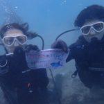 沖縄ダイビング☆11/26 珊瑚礁体験ダイビング 9:00~ なすび・やす