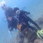沖縄ダイビング☆3/28 珊瑚礁体験ダイビング 11:30~ ローラ・なすび