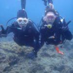 沖縄ダイビング☆4/7 珊瑚礁体験ダイビング 13:00 なすび・しゃり