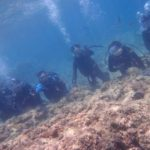 沖縄ダイビング☆7/6 青の洞窟体験ダイビング 10:30 ローラ・とも・ゆきほ・しゃり