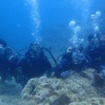 沖縄ダイビング☆7/10 青の洞窟体験ダイビング 13:00 とも・シャリ