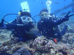 沖縄ダイビング☆2/26 青の洞窟体験ダイビング しおん・たく